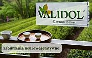 działa żółciopędnie - validol - Validol
