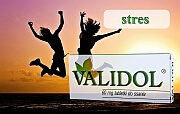 ziołowe leki uspakajające - validol - Validol