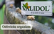 leki uspakające - validol - Validol