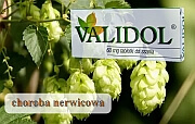 usuwa objawy nudności - validol - Validol