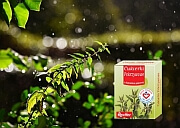 produkty na odporność - pokrzywa - Cukierki_Pokrzywowe